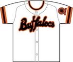 buffaloes_uni2.jpg